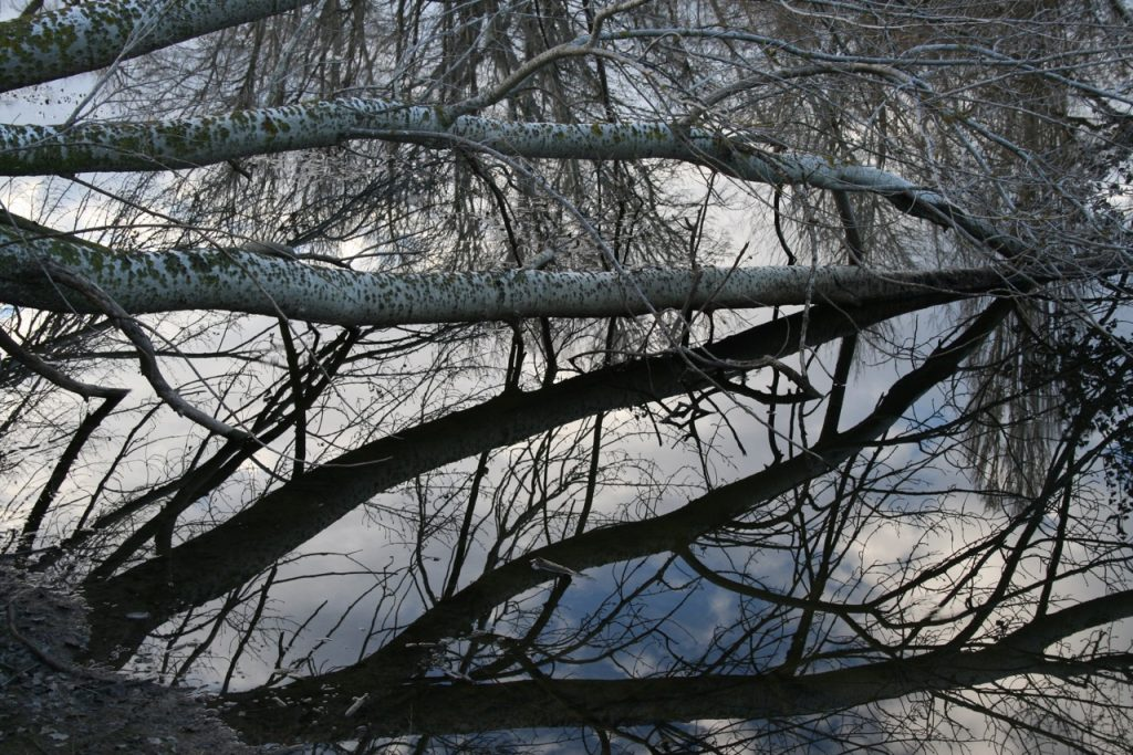 photography - river reflections