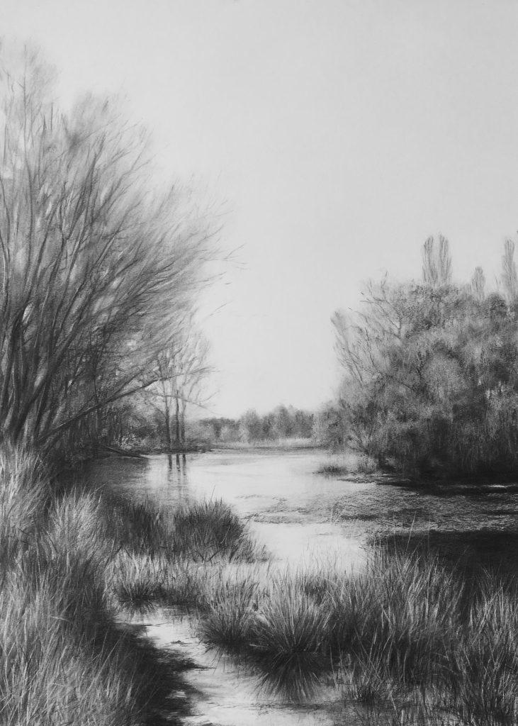 charcoal drawings - the gentle light of day - mulwarree ponds