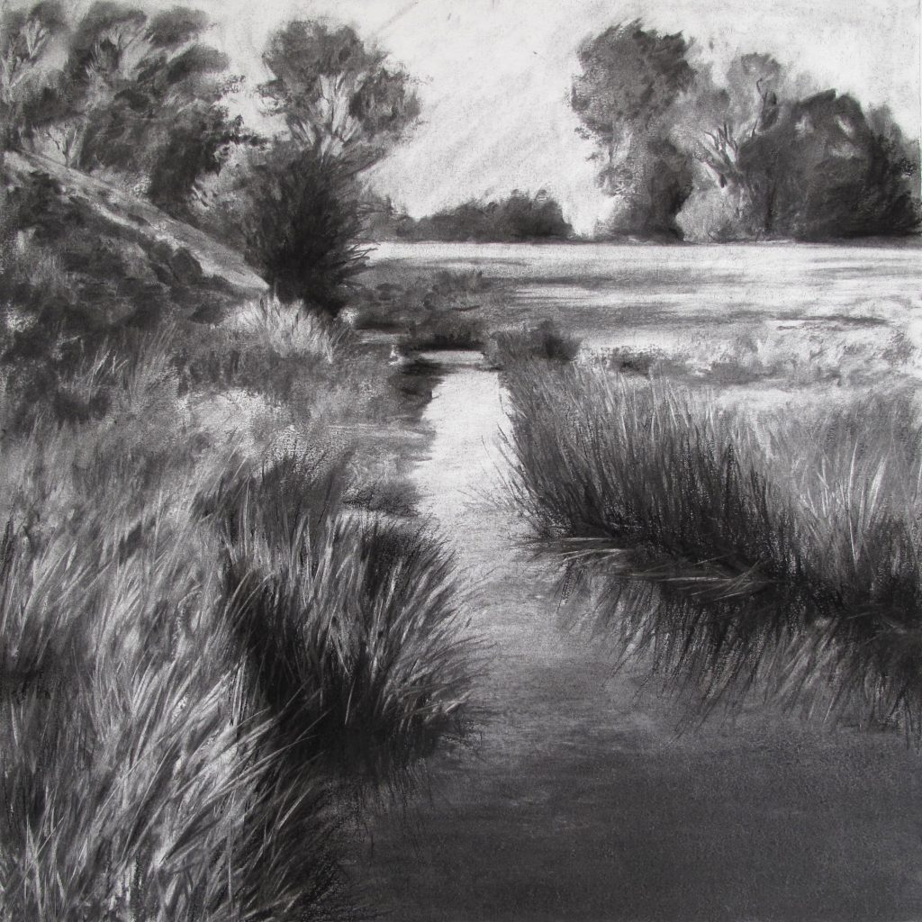 charcoal drawings - a pool of water lies with room for all the stars