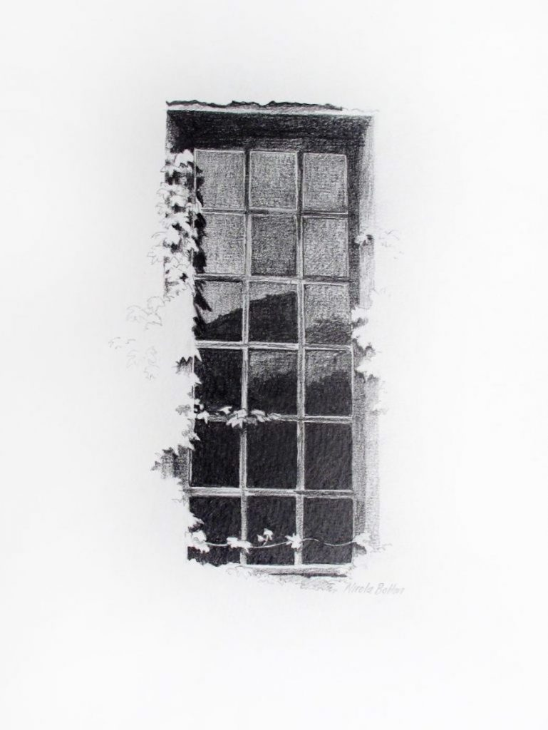 graphite drawings - ivy at the window