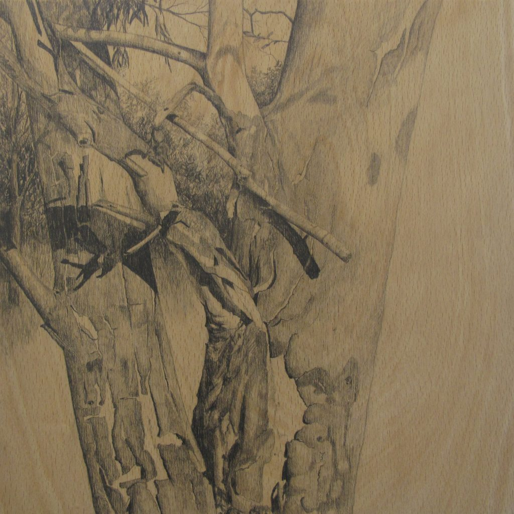 graphite drawings - the gum on the hill