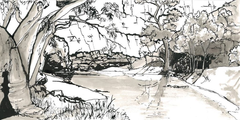 ink drawings - reflections