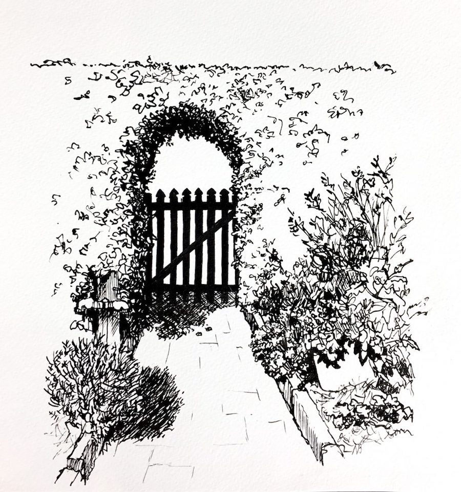 ink drawings - the vegetable garden gate